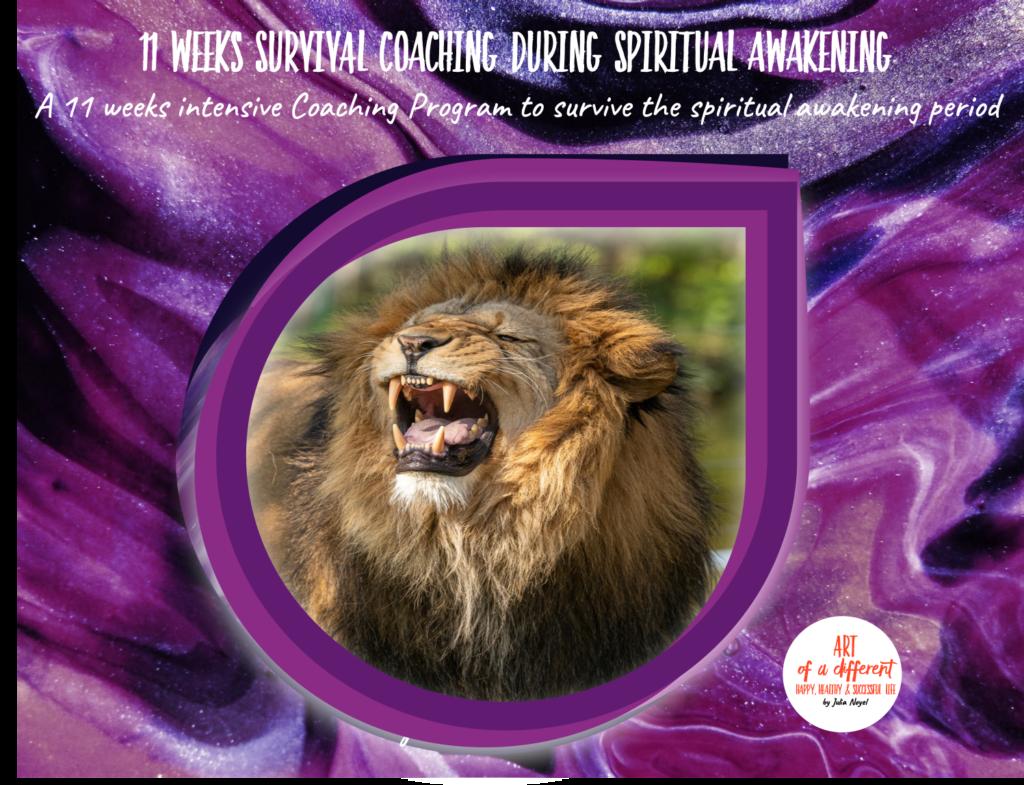11 Weeks Spiritual awakening Survival Coaching
